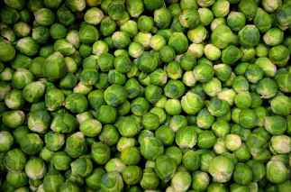 green round vegetables